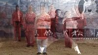 The Power Within - Shaolin Xiao Hong Quan DVD 《2007》