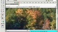 flash视频教程从入门到精通flash视频学习教程2
