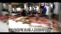 动物保护-玉林狗肉节宣传片