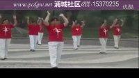 广场舞《兔子舞》舞蹈