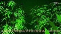 三维竹子舞竹林竹韵 朗诵LED舞台演出背景 动态背景视频