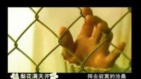 周艳泓最新歌曲《梨花满天开》