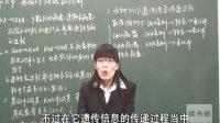 生物高中必修2__第4章第2节·ji因对xing状的控制