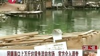 网曝海口上万斤垃圾鱼流向市场 官方介入调查 看东方 20130905 标清