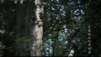 失落峡谷的黑猩猩 130914