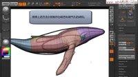 中文字幕ZBrush鲸鱼制作视频教程 无声音 共18讲02使用edge loop调整模型布线 理想视