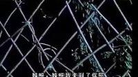 04 篱笆女人和狗 李小文 过三关