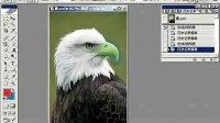 [PS]PS教程 Photoshop从头学起第20集