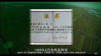 茶淀玫瑰香葡萄宣传片