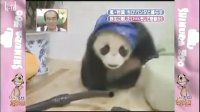 080412 Zoo KKR