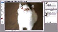 PS人物数码照片处理技法大全视频教程