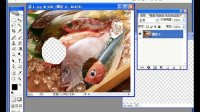 [PS]photoshop初学宝典——如何实用套索工具