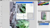 [PS]PhotoshopCS4教程_实践篇12.使用滤镜完成艺术化效果12.1使用传统滤镜.avi
