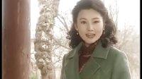 电视剧《红尘》(电视连续剧《走出凯旋门》剪辑版)(下)