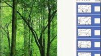 林中奔马gif图片制作教程