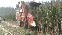 简易三行自走式玉米联合收获机