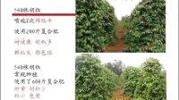 视频: 锦瑞丰内蒙古总代理 宣传片