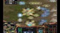在某些地图,神族用好了可以说是完全克制虫族的.星际争霸 Starcraft