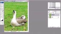 [PS]photoshop视频PS人物数码照片处理技法视频教程21 去除照片中多余的物体.avi