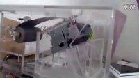视频: 抢庄龙游戏机;抢庄龙价格;抢庄龙厂家;抢庄龙多少钱