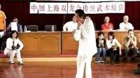 38 Zhang Xi Xing Wu Taiji form
