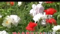 豫剧《白莲花》与韩本成恩爱心意已定伴奏