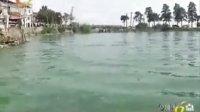 东湖水华已有减弱,应避免在水华附近区域游泳