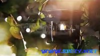 阳光穿过花园效果AE视频模板(含音频)