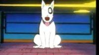 第01话 名犬、迷犬、狗登场