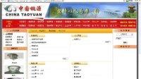 中国桃源政府门户网站发展纪实