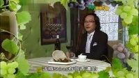(ATV)广州美食地图 第09集