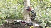 [放放上传]暴强!大学生设计出能爬树的机器蛇