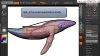 中文字幕ZBrush鲸鱼制作视频教程 使用edge loop调整模型布线