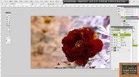 11.13 【意念原创】  PS处理 打造古色古香的鲜花或美景效果图1.1