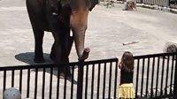 hamilton zoo 3