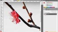 [PS]《PhotoshopCS5视频教程全集》70-替换颜色