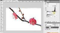 [PS]《PhotoshopCS5视频教程全集》97-色阶调整