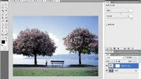 数码照片艺术处理 25.调整色彩偏灰的照片
