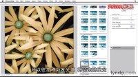 [PS]Photoshop教程18-2 使用智能滤镜无损地添加滤镜