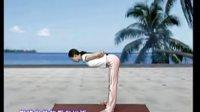 排毒塑形瑜伽
