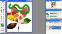 [PS]PhotoshopCSCS2标准教程(1)2-03 工具箱控件-颜色控件