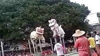 福绵三社醒狮梅花桩表演