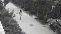 北京某别墅区:剽悍美女狂虐抢包小偷!女事主被吓傻  美女视频聊天室 3232.see010.tk