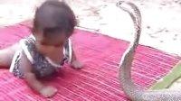 印度小孩从小与蛇共舞