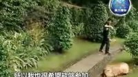 中国还有多少你不知道的达人