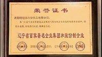 中国专业冰淇淋---碰碰凉