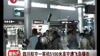 四川航空一客机5100米高空遭飞鸟撞击