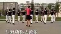 广场舞《套马杆》高清版