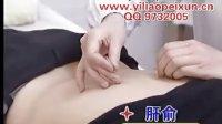 11分类-卫生部 中国微针疗法(第4辑)背针、腹针、颈项针【请看简介】
