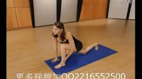瑜伽19.Sara-Ivanhoe.Basic-Yoga-Workout-For-Dummies.2
